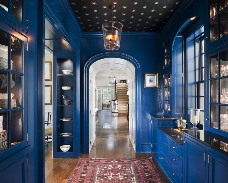 Ceiling-design-for-hall-2014-hall-traditional-with-ceiling-light-blue-room-butlers-pantry